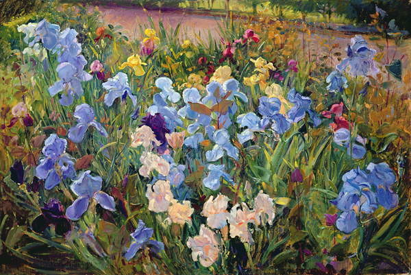 The Iris Bed, 1993 Canvas Print
