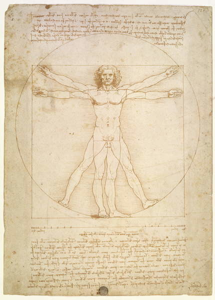 Fine Art Print The Proportions of the human figure (after Vitruvius), c.1492