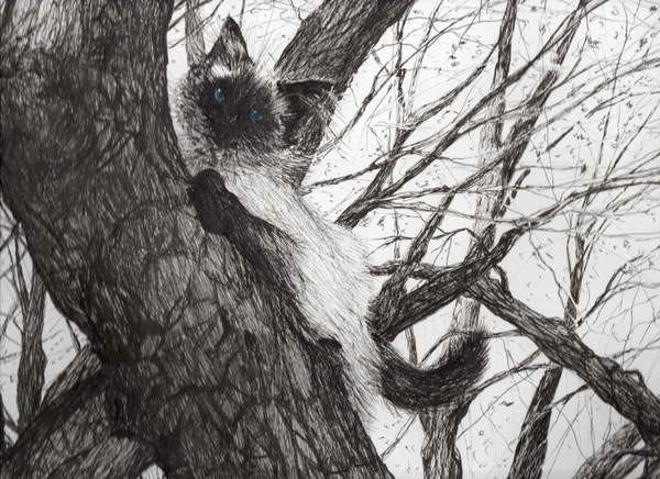 Up the apple tree, 2006, Canvas Print
