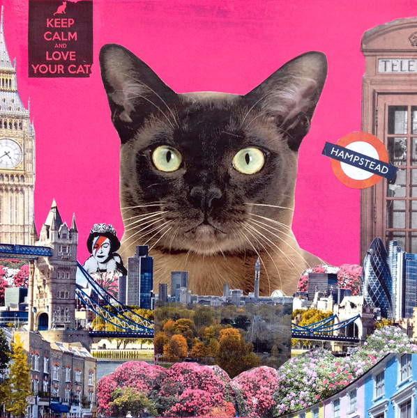 Fine Art Print Urban cat, 2015,