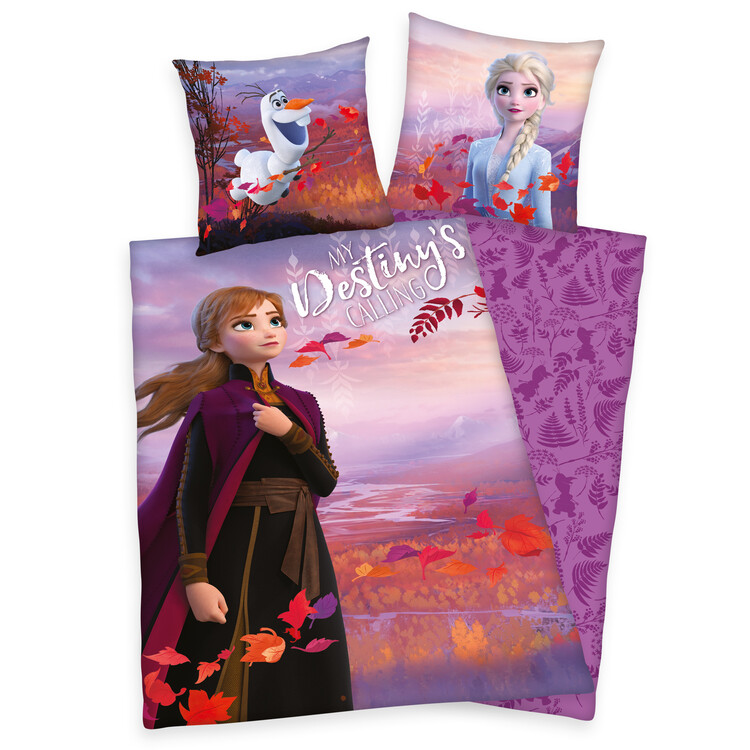 Bed sheets Frozen 2