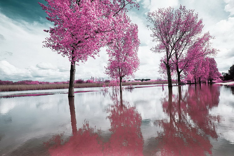 Glass Art Pink World - Blossom Tree 2