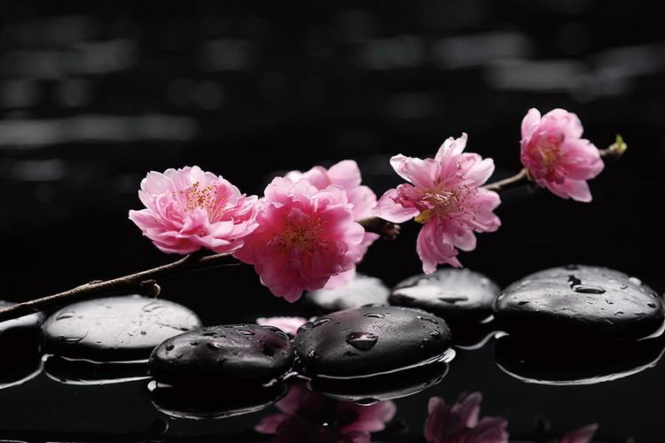 Glass Art Zen - Pink Orchid 2