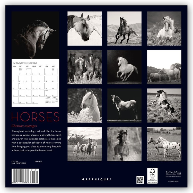 Horse Calendar 2022.Horses Wall Calendars 2022 Large Selection