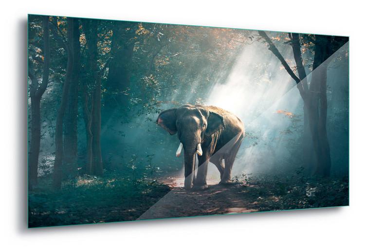 Glass Art  Elephant Path