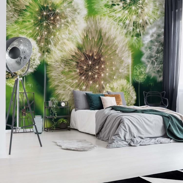 Wallpaper Mural Dandelions