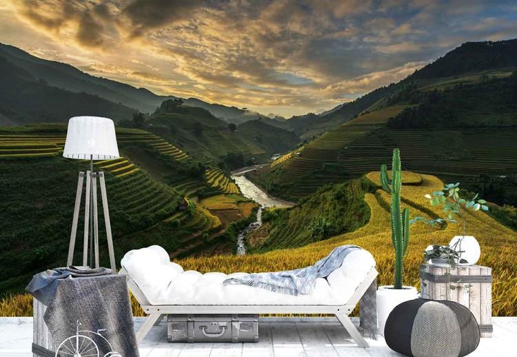 Wallpaper Mural Rice Terrace In Vietnam