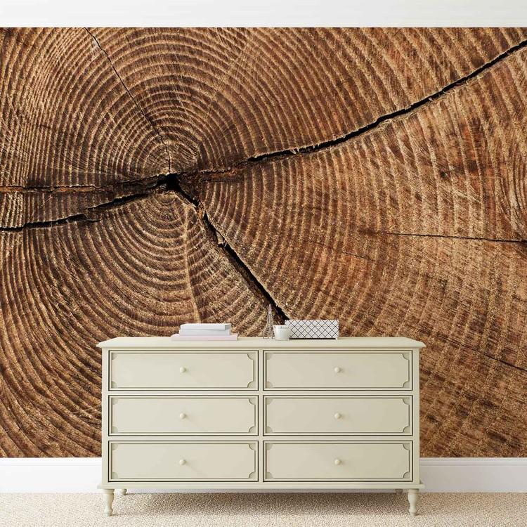 Wallpaper Mural Tree Stump Rings