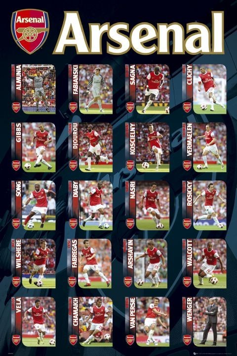 Juliste Arsenal - squad profiles 2010/2011