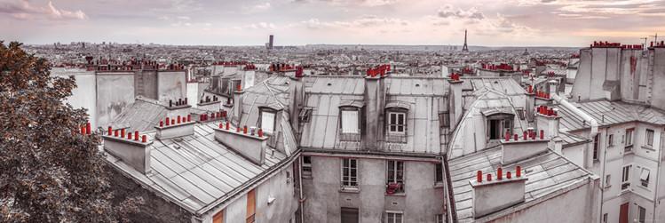 Juliste  Assaf Frank - Paris Roof Tops