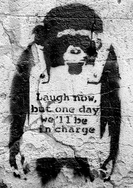 Juliste Banksy street art - chimp