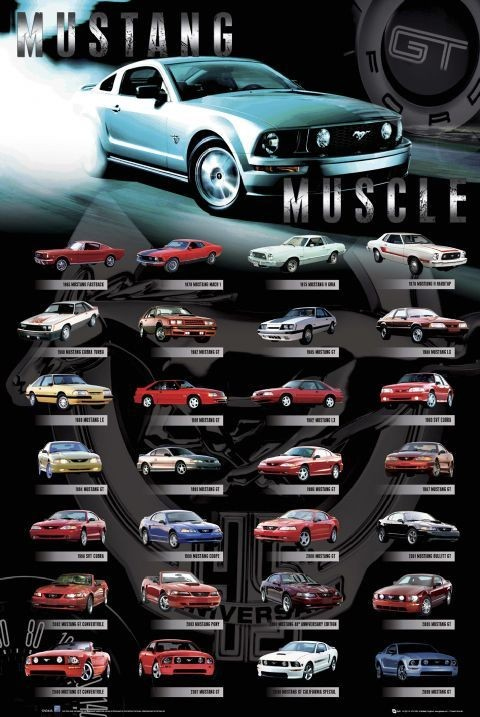 Juliste Ford - Mustang comp