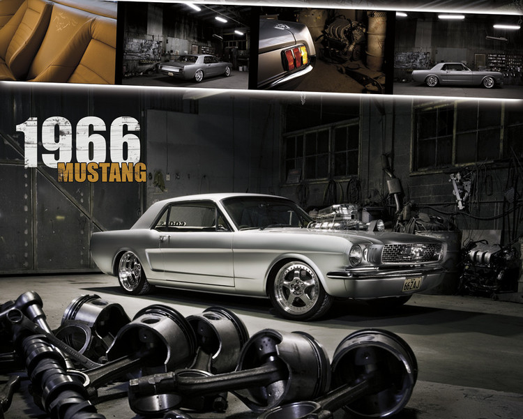 Juliste Ford Shelby - mustang 1966