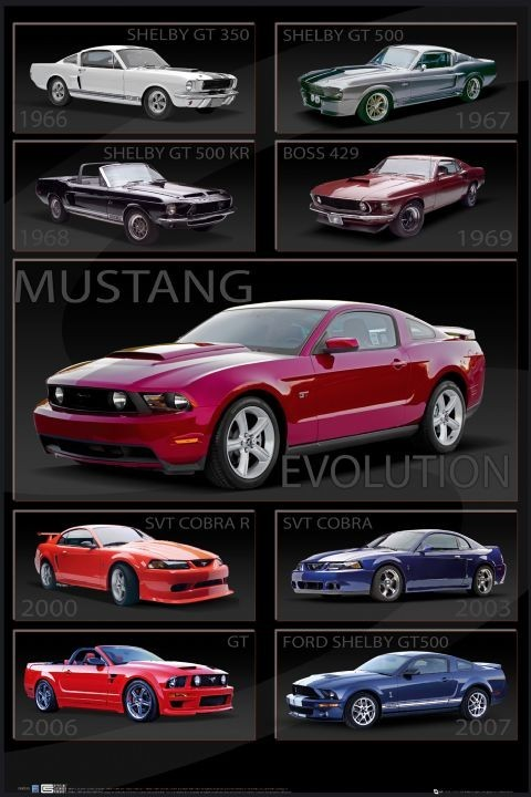 Juliste Ford Shelby Mustang - evolution