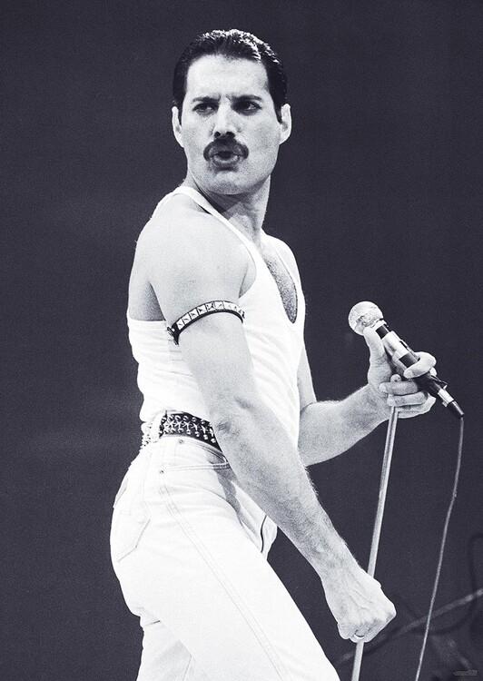 Juliste Freddie Mercury - Live Aid
