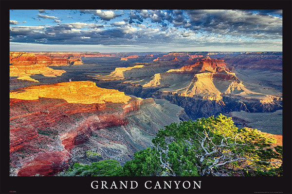 Juliste Grand Canyon - arizona / usa
