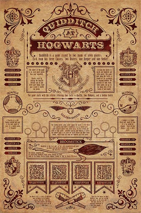 Juliste Harry Potter - Quidditch At Hogwarts