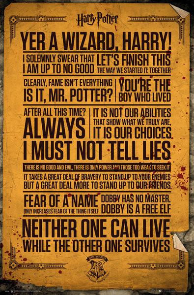 Juliste Harry Potter - Quotes