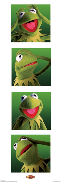 Juliste KERMIT - boxes