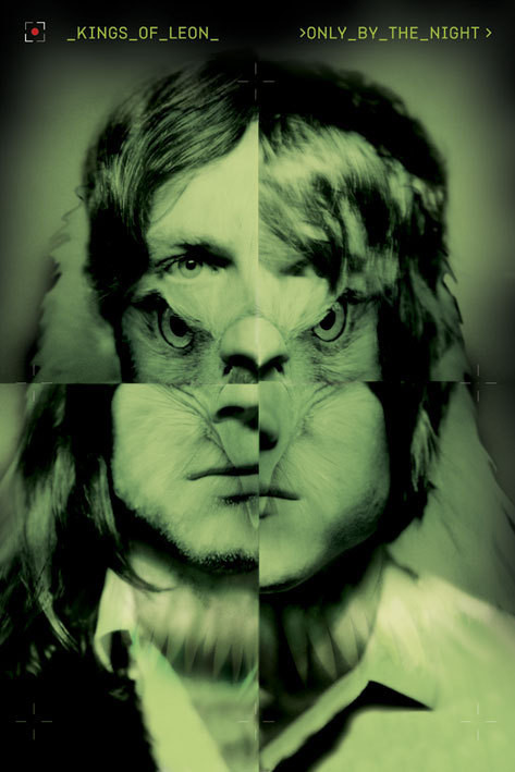 Juliste Kings of Leon - only by the night