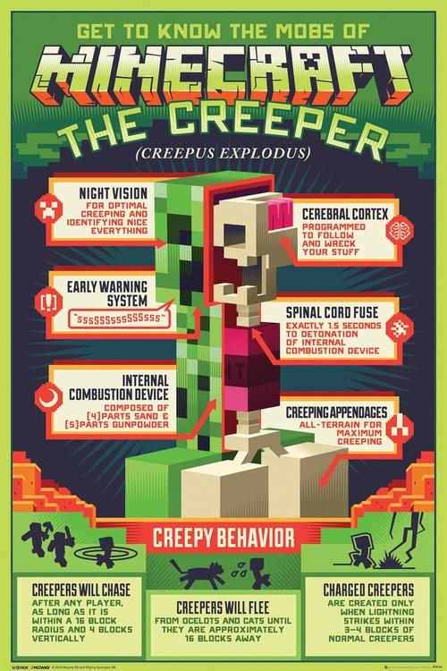 Juliste  Minecraft - Creepy Behaviour
