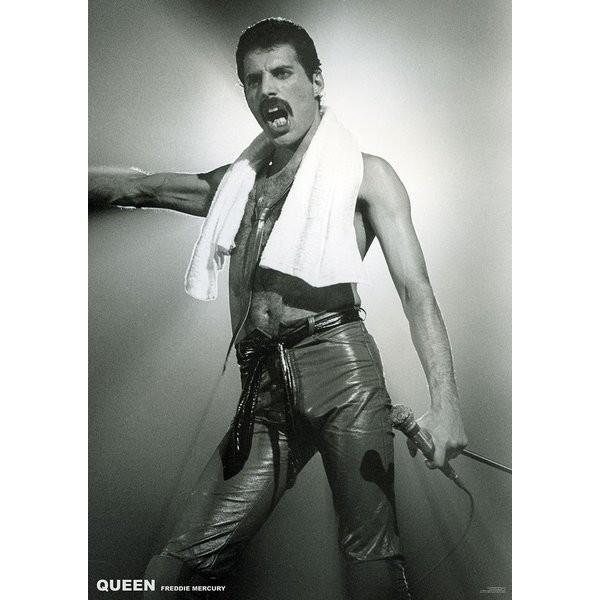 Juliste  Queen (Freddie Mercury) - Live On Stage
