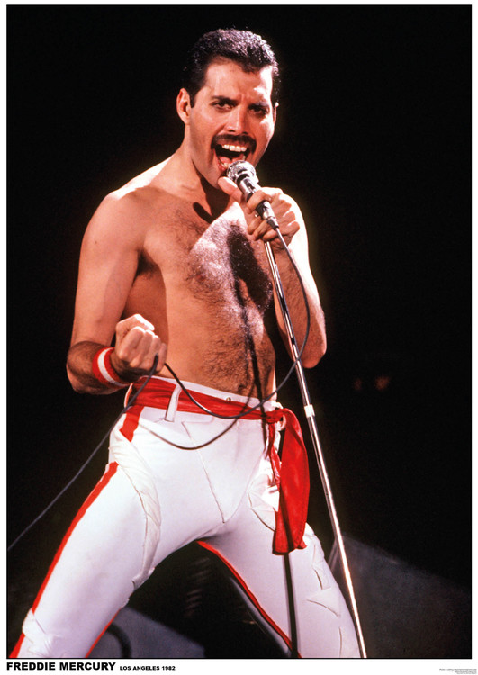Juliste  Queen (Freddie Mercury) - Los Angeles 1982