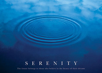 Juliste Serenity - the future ...