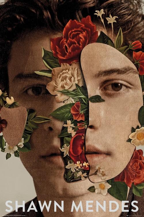 Juliste  Shawn Mendes - Flowers
