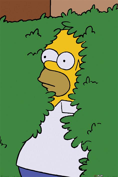 Juliste Simpsonit - Homer Bush