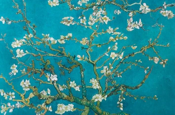Juliste Vincent van Gogh - almond blossom san ramy 1890