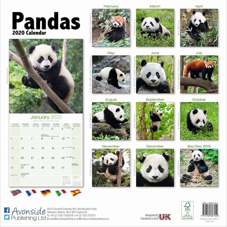 Kalenteri 2020 Pandas