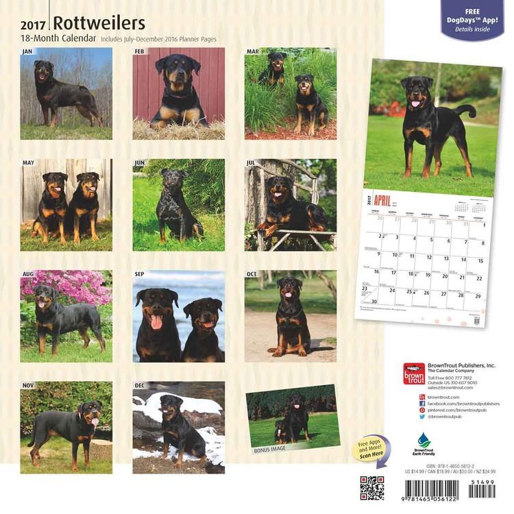 Kalenteri 2018 Rottweilers