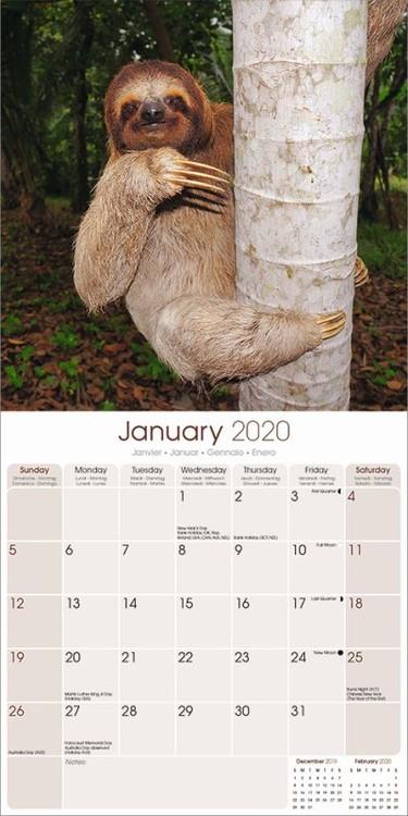 Kalenteri 2021 Sloths