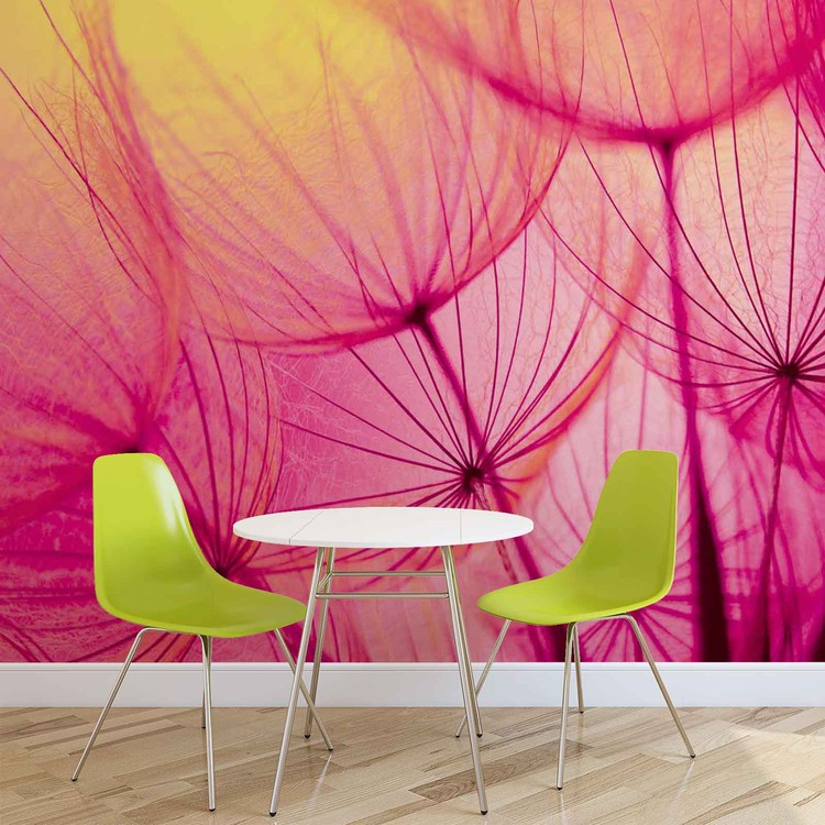 Flower Dandelion Valokuvatapetti