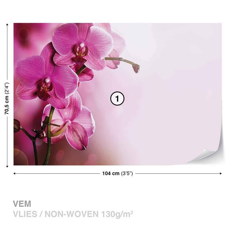 Flowers Valokuvatapetti