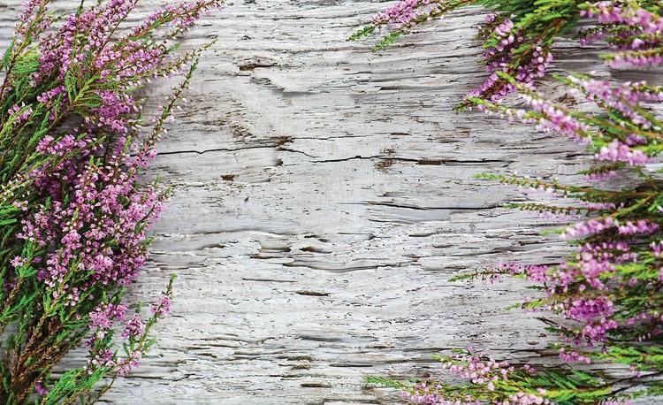 Flowers Wood Valokuvatapetti