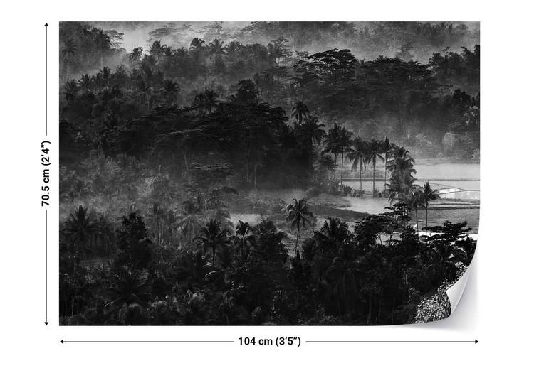 Mist In The Morning Valokuvatapetti