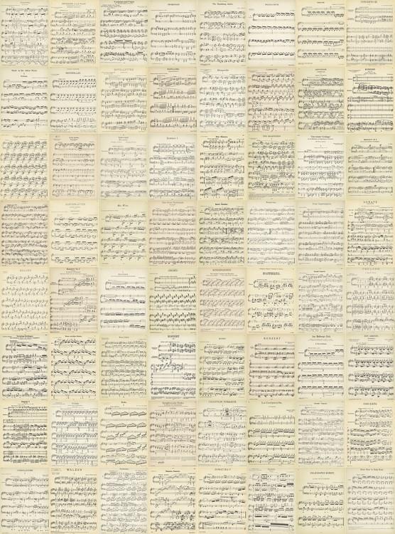 Kuvatapetti, TapettijulisteMusiikki - Music Notes