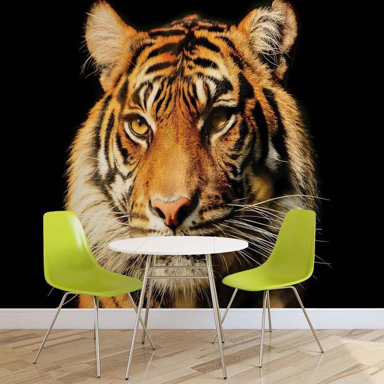 Tiger Valokuvatapetti