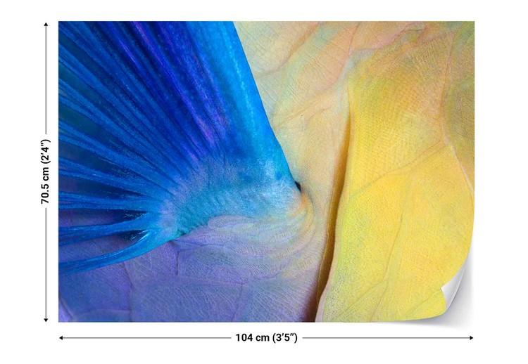 Wings Valokuvatapetti