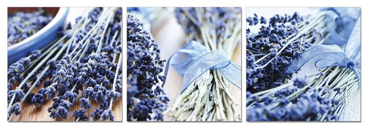 Lavender - Collage Tableau Multi-Toiles