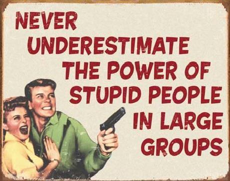 Metal sign EPHEMERA - Stupid People