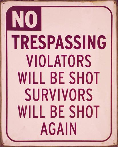 NO TRESPASSING Metal Sign