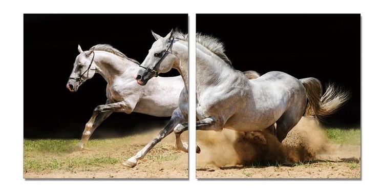 Apasionáta Mounted Art Print