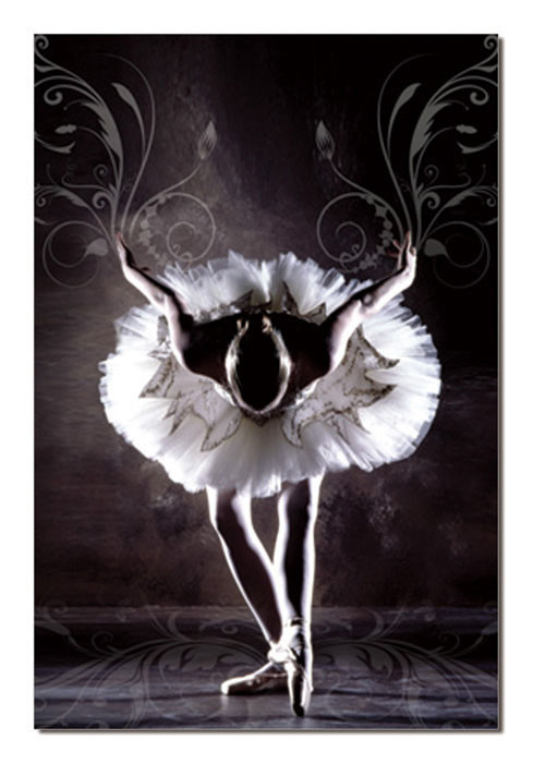 Black & White Ballerina Mounted Art Print