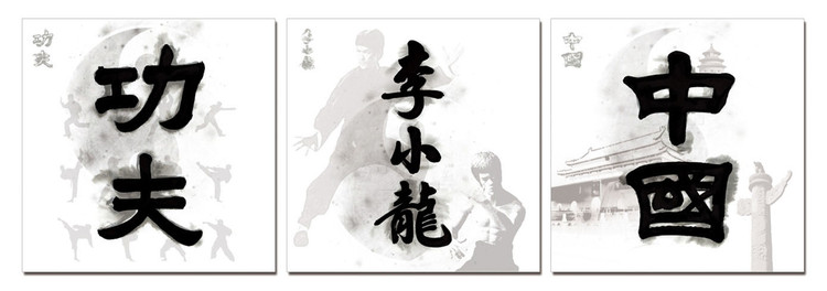 China Signs - Kung Fu. Bruce Lee, China Mounted Art Print