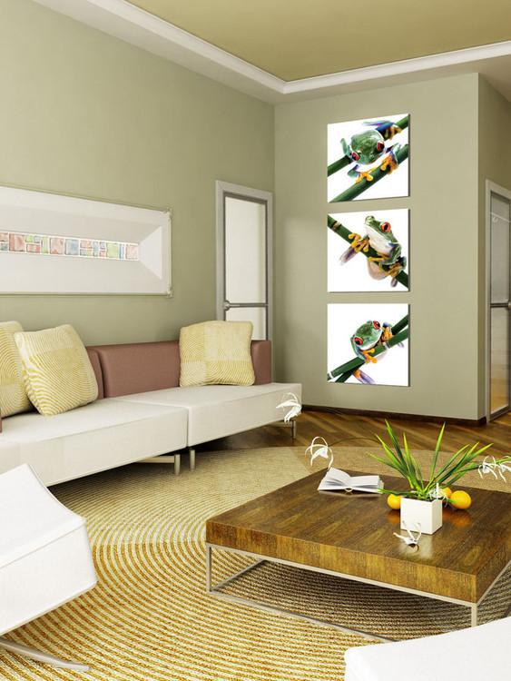 Colorful Frog Mounted Art Print
