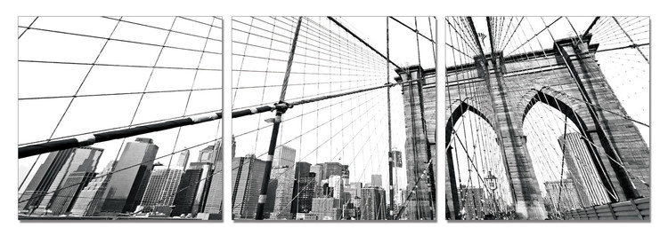 New York - Brooklyn Bridge detail (B&W) Mounted Art Print