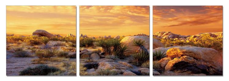 Orange Desert Mounted Art Print